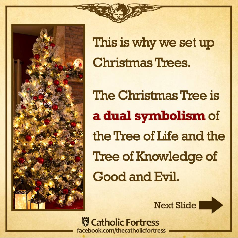 Meaning Of Christmas Tree Symbol: THE CHRISTMAS TREE IS A BIBLICAL SYMBOL OF CHRIST